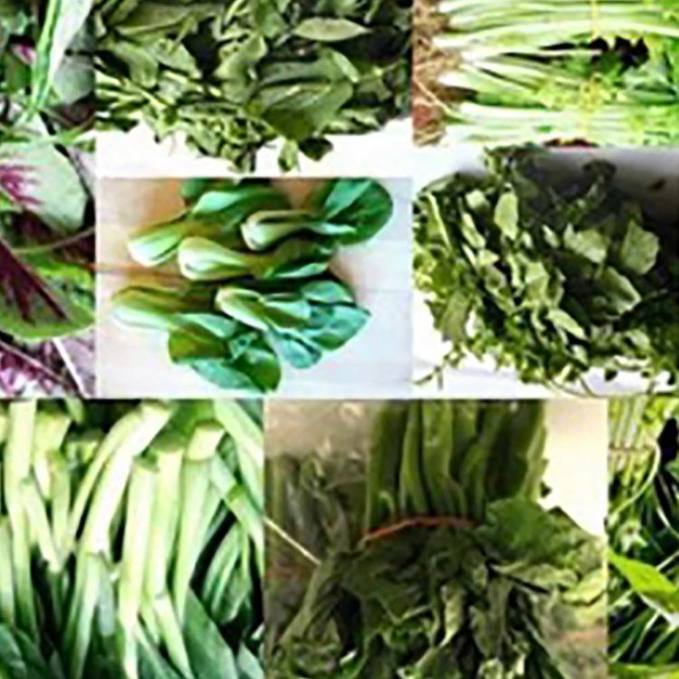 Seven Lucky Reasons Why You Must Eat Your Greens